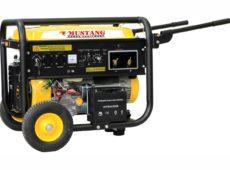 Сварочный агрегат CGW210E2 (220 А, MUSTANG)  запросить стоимость